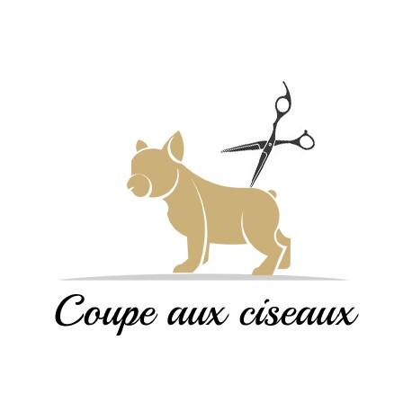 Coupe aux ciseaux pour chien à Paris