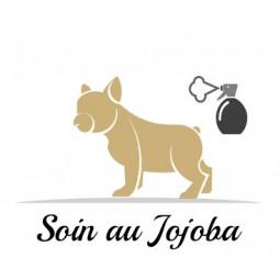 Soin au jojoba pour chien