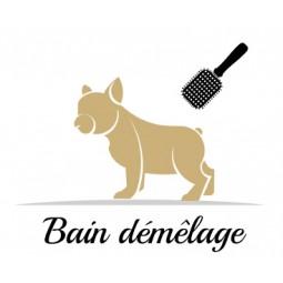 Bain démêlage pour chien