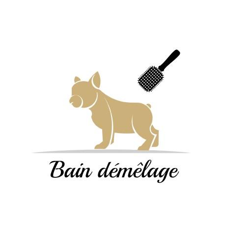 Bain démêlage pour chien à Paris